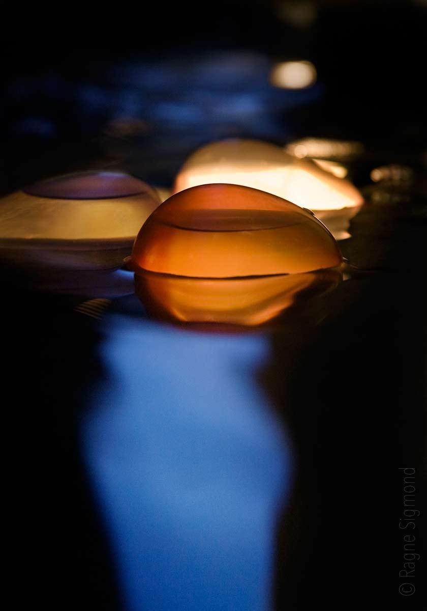 Balloons_blue-hour_Ragne-Sigmond