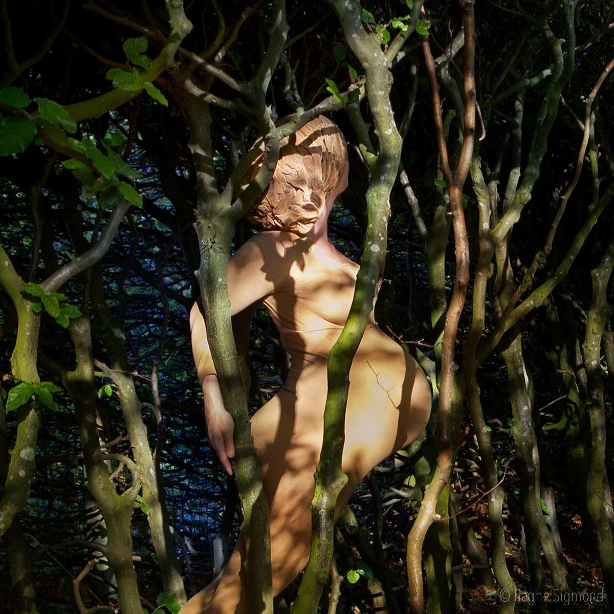 camouflage_Ragne-Sigmond