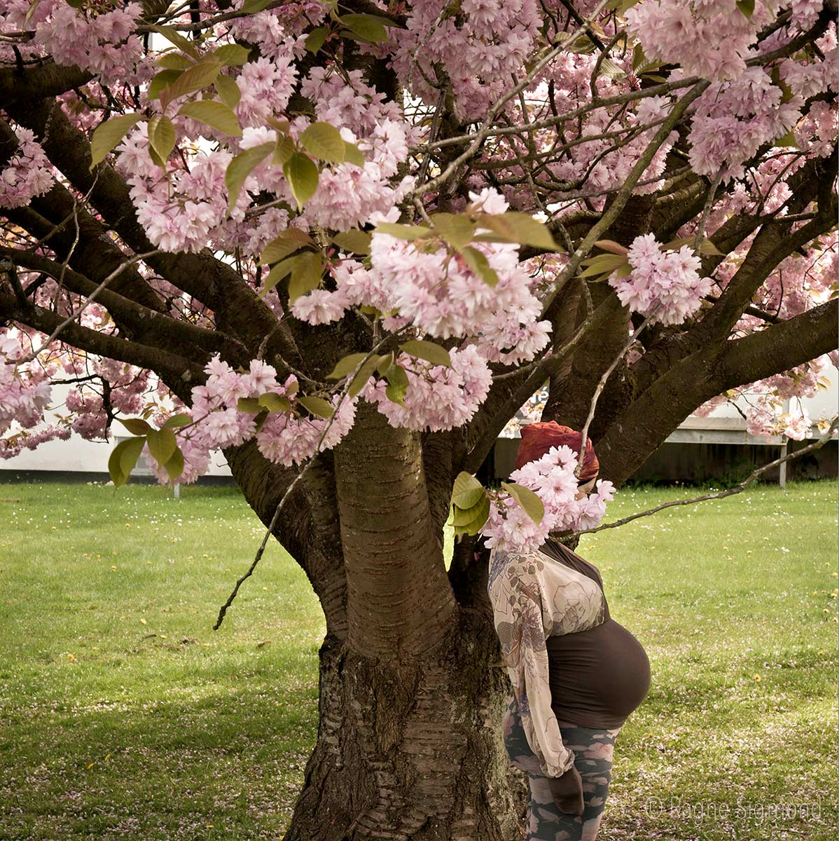 hiding_Ragne-Sigmond