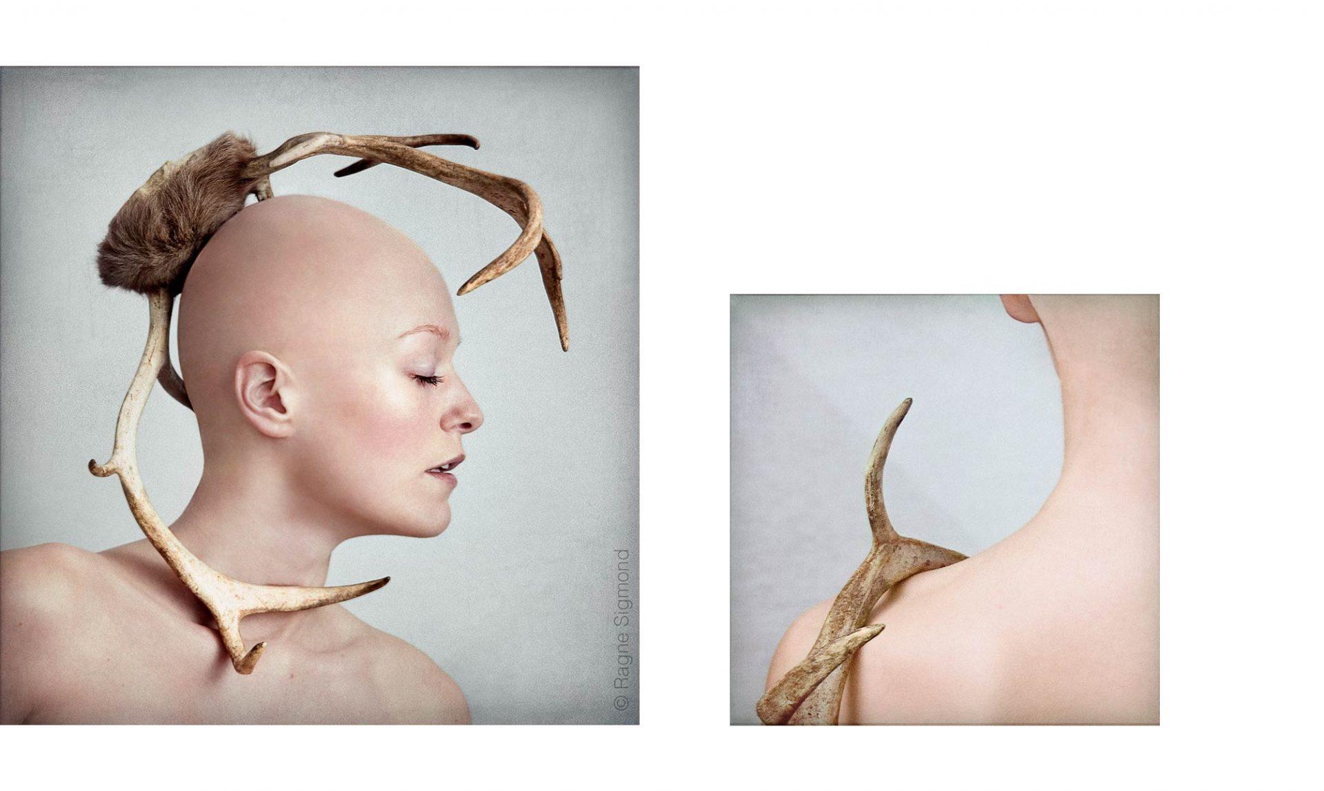antlers_Ragne-Sigmond